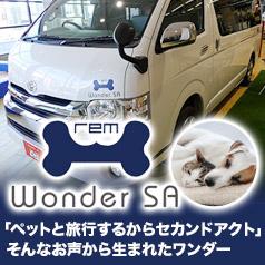 rem Wonder SA